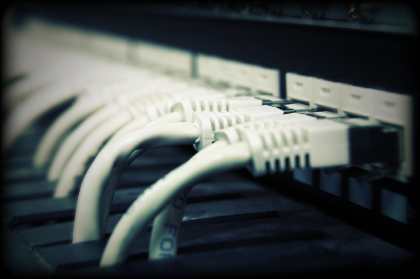 UTP network cables